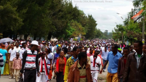 Celebration of Irreecha Oromoo 2014 (6408 according to Oromo Calendar). 5th October 2014 @ Horaa Harsadii, Bishoftu, Oromia. Suura2