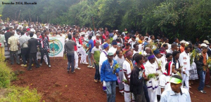 Celebration of Irreecha Oromoo 2014 (6408 according to Oromo Calendar). 5th October 2014, Horaa Harsadii, Bishoftu, Oromia. Suura4