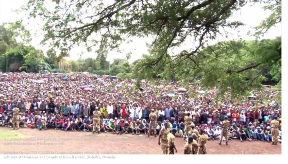 Irreecha Oromo 2014 Hora Harsadii, Oromia 5