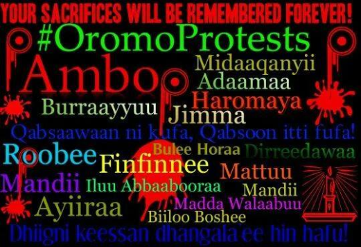 Ambo your sacrifices will be remembered for ever