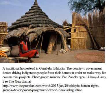 Traditional homestead in Gambela
