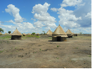 The new village of Bildak in Ethiopia's Gambella region, which the semi-nomadic Nuer who were forcibly transferred there quickly abandoned in May 2011 because there was no water source for their cattle.
