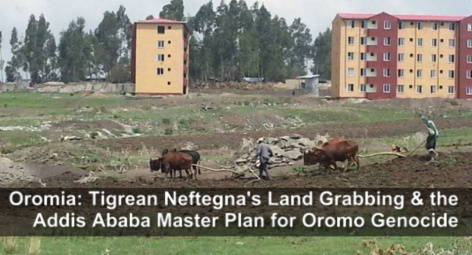 Tigrean Neftengna's land grabbing and the Addis Ababa Master plan for Oormo genocide