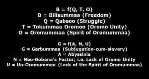Bilisummaa (Freedom Function)
