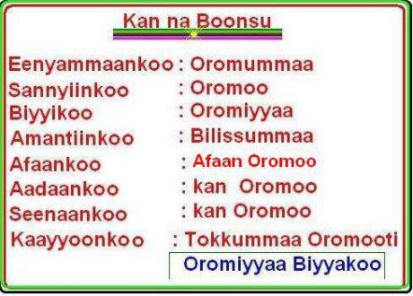 Kan na boonsu Oromummaa