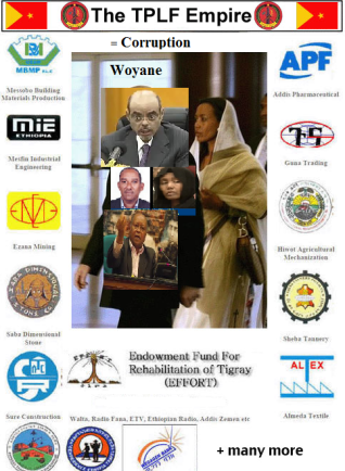 The TPLF Corruption network