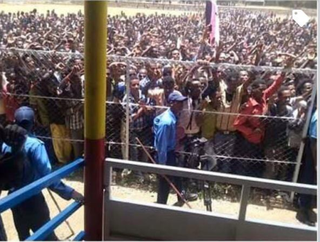 Ambo Defied TPLF's Ban of Oromo's Freedom of Assembly and Filled Stadium to Express Support for OFC