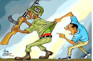 IGAD and TPLF