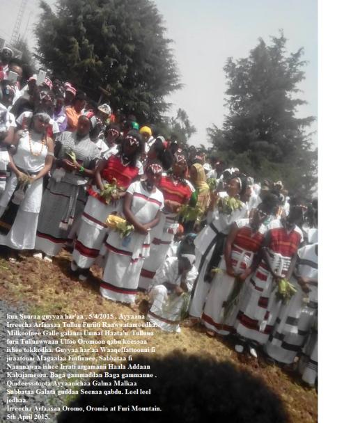 Irreecha Arfaasaa Celebrate at Furii (Oromia), 5th April 2015