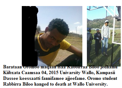 Health Science 1st year Oromo student Rabbirra Biloo hanged to death at Wallo University on May 4, 2015