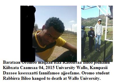 Health Science 1st year Oromo student Rabbirra Biloo hanged to death at Wallo University on May 4, 2015