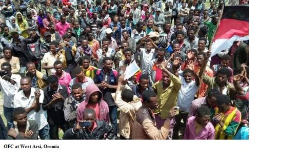OFC at West Arsi, Oromia