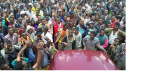 OFC at West Arsi, Oromia1