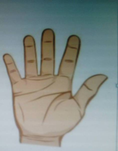 OFC MEDREK'S Election Symbol (Five Fingers with the Open Palm'High Five Goes Viral2