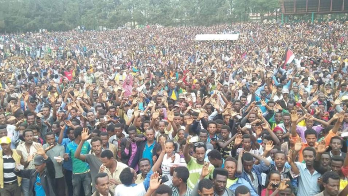 OFC Medrek's Last Campaign Stops – Xuquur Incinii (Diree Badhaas) and Holataa in Central Oromia1