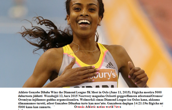 Oromo athlete Genzebe Dibaba Wins the Diamond League 5K Meet in Oslo (June 11, 2015)