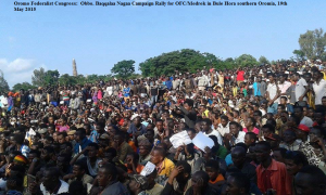 Oromo Federalist  Congress rally1 in a Southern Oromia town of Bule Hora Led by Baqqalaa Nagaa on 19 May 2015