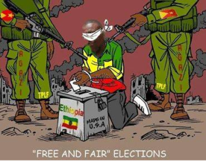TPLF in electoral fraud, 24 May 2015