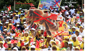 TPLF's sham elections