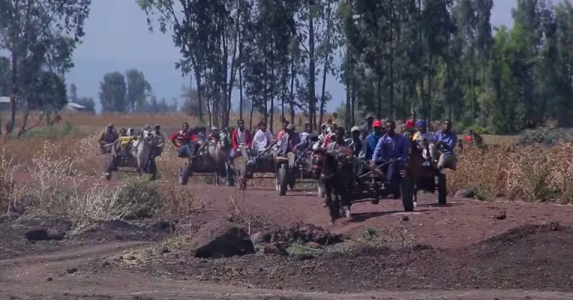 Hacaaluu Hundessa, Oromo culture music video maalan jira picture1