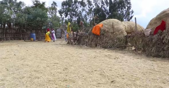 Hacaaluu Hundessa, Oromo culture music video maalan jira picture2