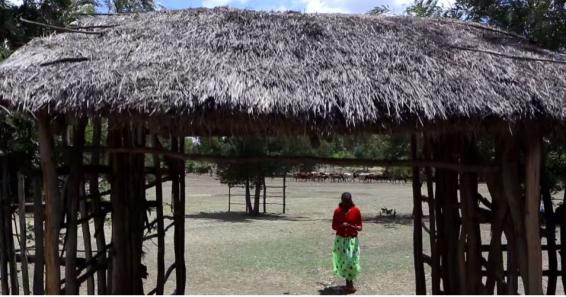 Hacaaluu Hundessa, Oromo culture music video maalan jira picture23