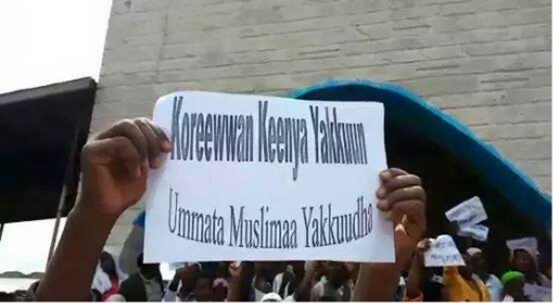 Ethiopian Muslims staged protest across the country1, 10 July 2015