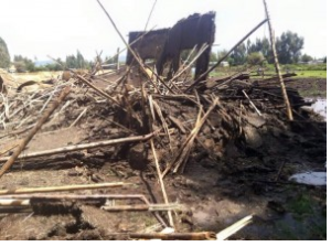 TPLF Ethiopian forces destroyed Oromo houses in Ada'a district, Central Oromia, July 2015