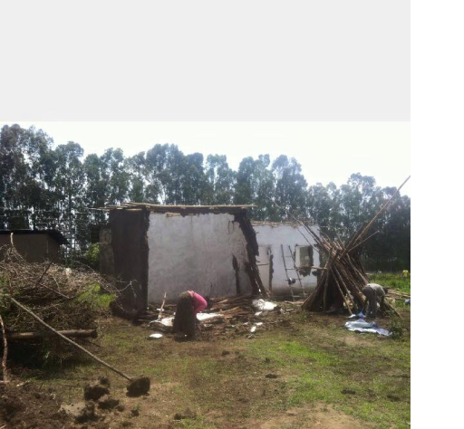 TPLF Ethiopian forces destroyed Oromo houses in Central Oromia, July 2015