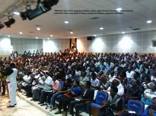 Hagayya 5, bara 2015, magaalaa Finfinne, galma aadaa Oromoo keessatti – CD-iin kuusaa walaloolee waloo Lataa Qana'ii bakka uummatni hedduun argametti eebbifamee