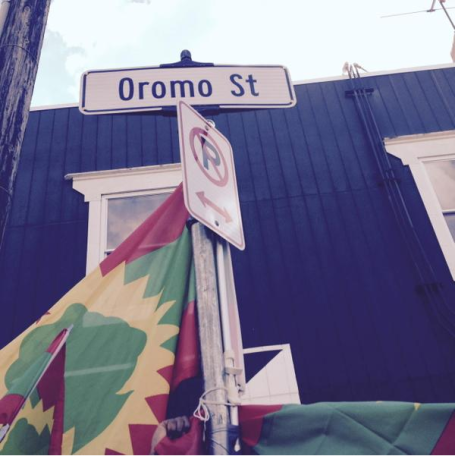 Oromo st inauguration day 12 September 2015 at Cedar Riverside