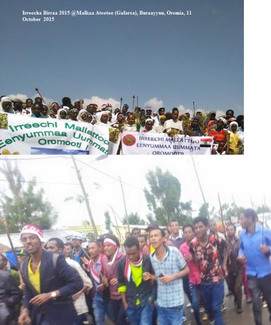 Irreecha Birraa 2015 @Malkaa Ateetee, Buraayyuu, Oromia, 11 October 2015 picture1
