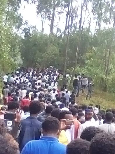Irreecha Birraa (Malkaa) Oromoo kan bara 2015, Haroo Adiiyaa, magaalaa Naqamtee sadaasa 8, 2015 picture9