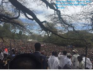 Irreecha Birraa Oromo Hora Harsadii, Onkoloolessa 4, Bara 2015 picture2