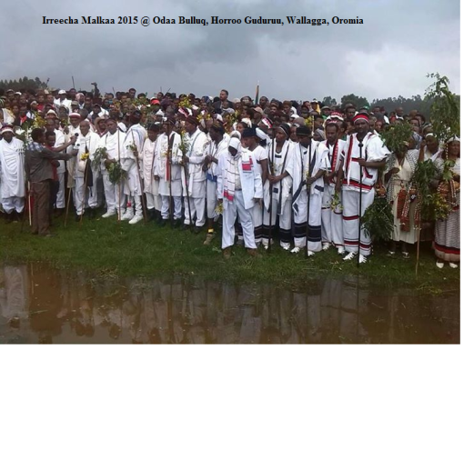 Irreecha Malkaa 2015 @Horroo Guduruu, Wallagga, Oromia, picture2