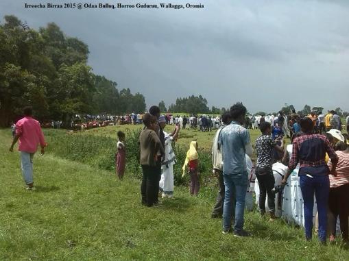 Irreecha Malkaa 2015 @Horroo Guduruu, Wallagga, Oromia