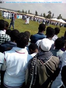 Irreecha Malkaa 2015 @Malkaa Ateetee, Gafarsaa, Buraayyuu, Oromia. 11 October 2015 picture1