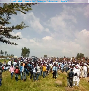 Irreecha Malkaa 2015 @Malkaa Ateetee, Gafarsaa, Buraayyuu, Oromia. 11 October 2015 picture12