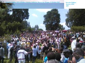 Irreecha Malkaa 2015 @Malkaa Ateetee, Gafarsaa, Buraayyuu, Oromia. 11 October 2015 picture3