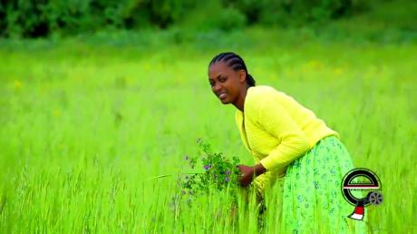 Oromia, Bara Olaanoon Gadaa7