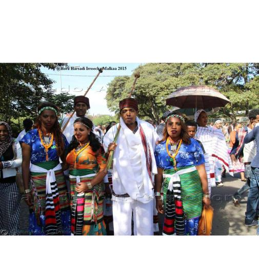 Oromo, Irreecha Malkaa Oromoo 2015 @Hora Harsadi, Bishoftuu, Oromia, Onkoloolessa 4, 6409 (ALO)