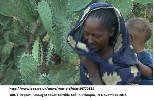Famine Ethiopia 2015 BBC report