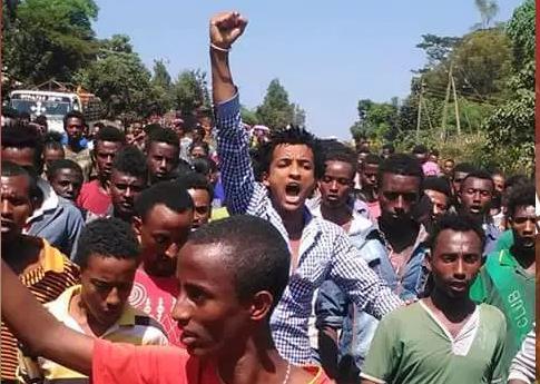 Oromo students Protests, Western Oromia, Mandii, Najjoo, Jaarsoo,....