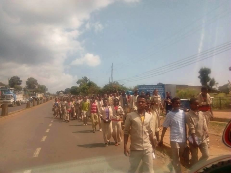 OromoProtests, Naqamtee, Oromia, November 27, 2015