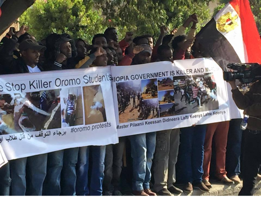 Egypt, Oromo Peaceful rally in solidarity with #OromoProtests Oromia against TPLF Ethiopian regime's ethnic cleansing (Master plan), December 10, 2015, picture2