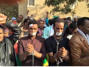 Egypt, Oromo Peaceful rally in solidarity with #OromoProtests Oromia against TPLF Ethiopian regime's ethnic cleansing (Master plan), December 10, 2015