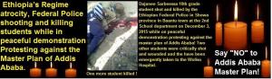 Ethiopia's regime atrocity against Oromo people