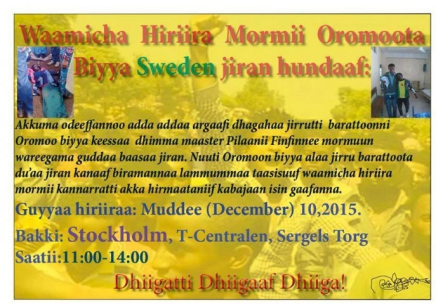 Global Rally in Solidarity with Oromo students in Oromia. Sweden