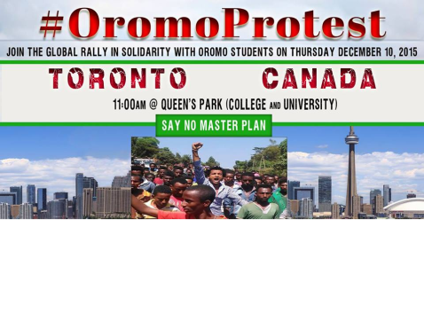 Global Rally in Solidarity with Oromo students in Oromia. Toronto