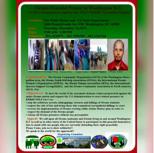 Global Rally in Solidarity with Oromo students in Oromia. Washington D.C.